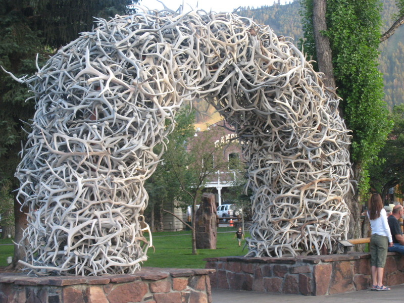 Arc_of_antlers