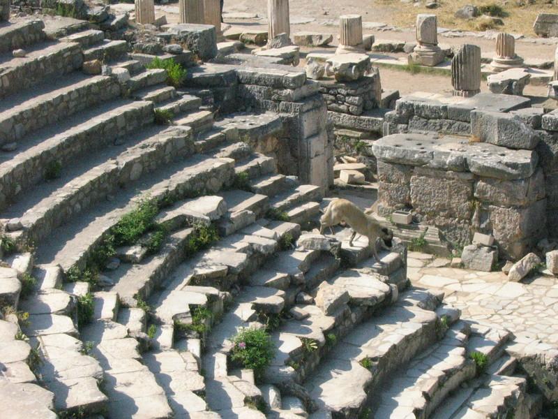 Ephesus_and_selcuk_053