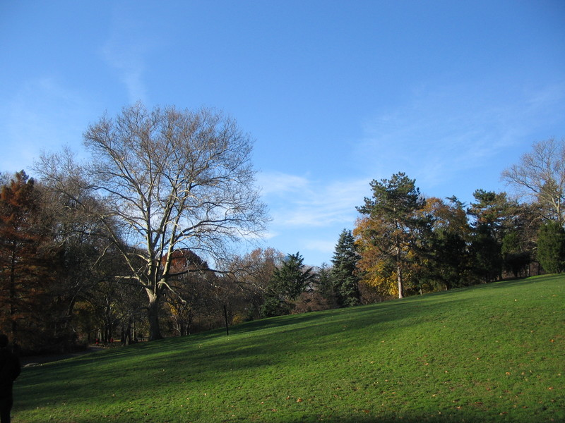 Late_fall_walk_in_central_park_017